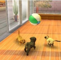 3DS Nintendogs+Cats-Toy Poodle&new Friends Select2435424354