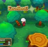 3DS Fantasy Life2806728067