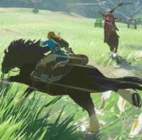 SWITCH The Legend of Zelda: Breath of the Wild3155031550